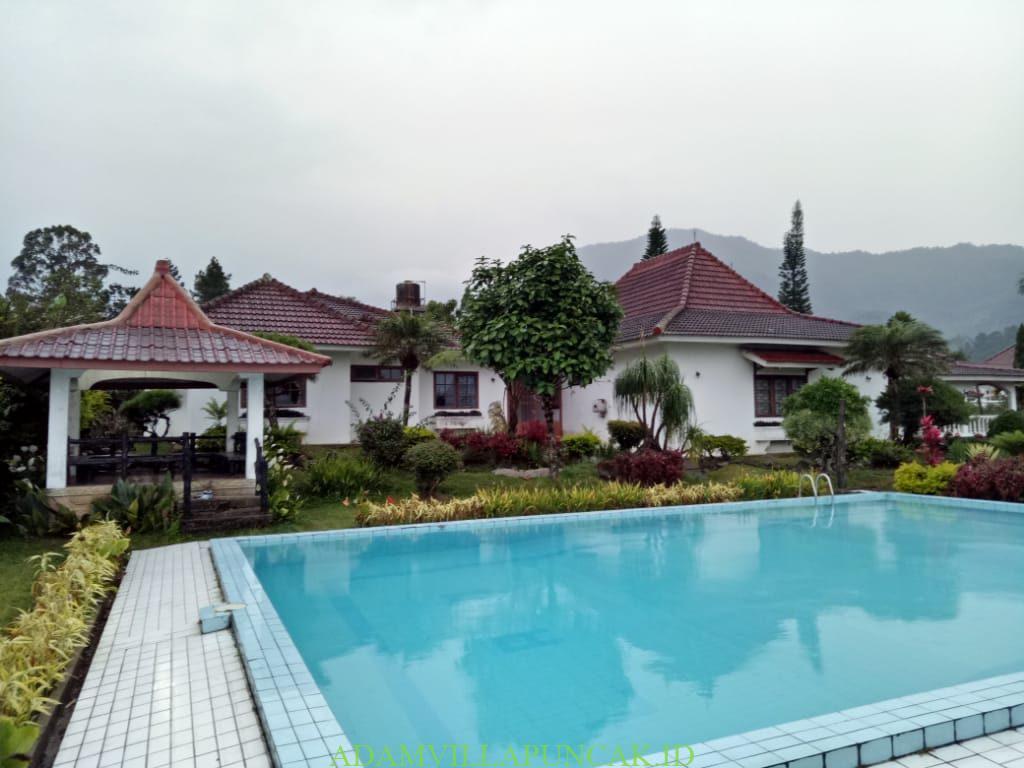villa coolibah klasik 8 kapasitas 100 orang