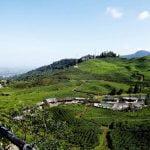 Daftar Harga Sewa Villa Di Puncak Bogor, Jawa barat