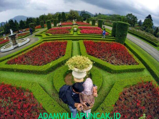 wisata di puncak taman bunga nusantara