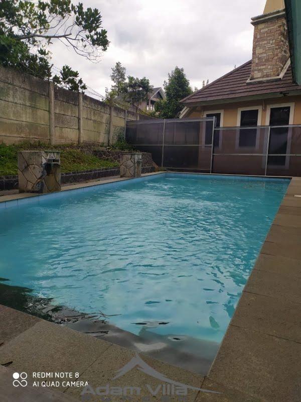 villa indian 3 kamar kota bunga kolam renang pribadi